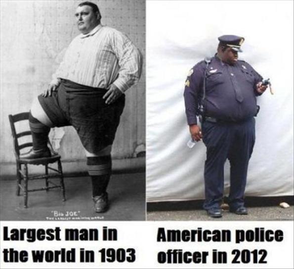 fat-americans